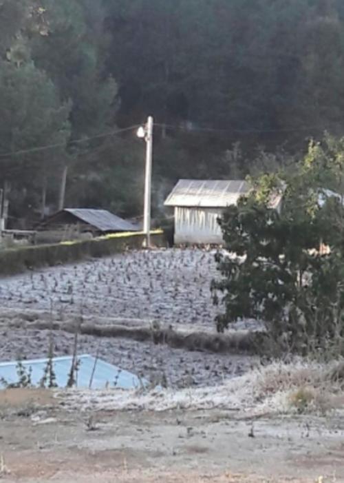 Los campos de Concepción Tutuapa, San Marcos, fueron cubiertos con hielo por las bajas temperaturas. (Foto: Facebook/Ingrid Xicay)