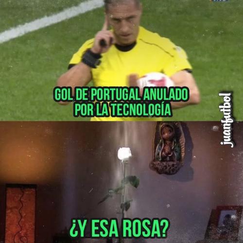 Hasta la Rosa de Guadalupe forma parte de los memes.