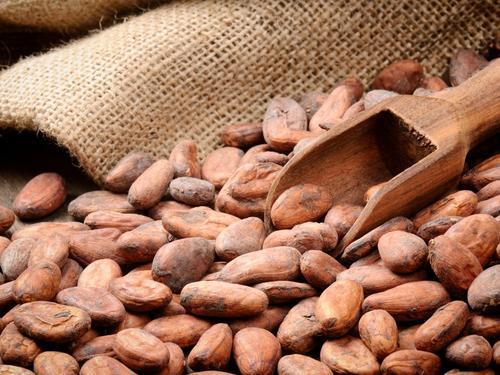 El cacao también forma parte de los ingredientes utilizados en la gastronomía mesoamericana.