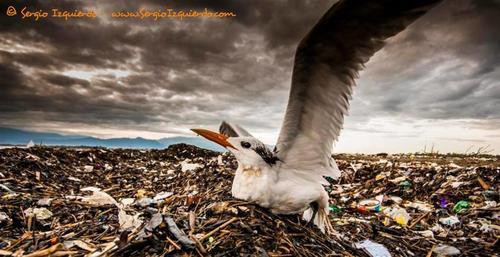 Sergio Izquierdo se ha dedicado a retratar los efectos de la contaminación en Guatemala y el mundo. (Foto: Sergio Izquierdo)
