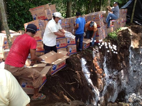 Destrucción de huevos decomisados el 10 de agosto. (Foto: MAGA)
