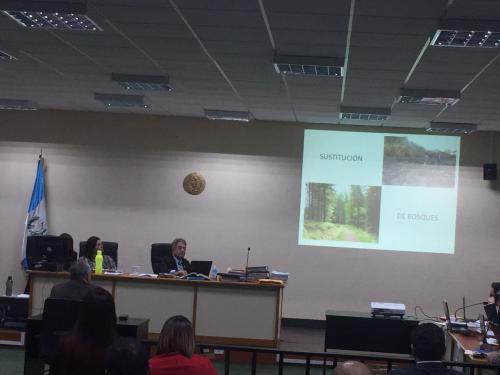 """El """"Proyecto Y"""" consistía en un supuesto plan de conservación de bosques en Petén. (Foto: Evelyn de León/Soy502)"""