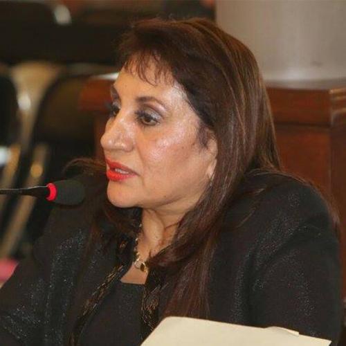 Sonia Montes fue candidata a Procurador de Derechos Humanos. (Foto: elecciónPDH)