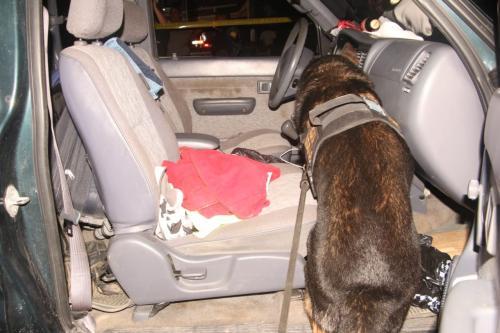 Las autoridades ubicaron el dinero con ayuda de un agente canino. (Foto: PNC)