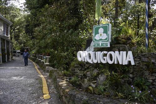 El sitio es ideal para conocer sobre las orquídeas, su conservación y disfrutar un paseo en medio de la naturaleza a pocos kilómetros del centro de Cobán. (Foto: Fredy Hernández/Soy502)