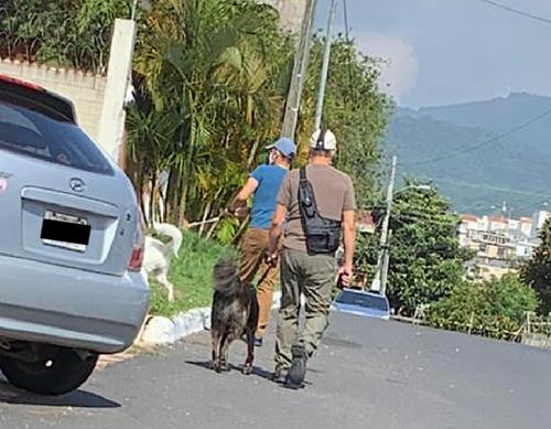 Según Ana María, en la fotografía se observa como una de las supuestas víctimas lleva en la mano derecha un Taser mientras pasean a su perros. (Foto: Cortesía)