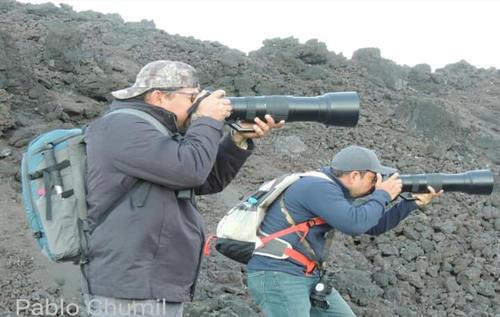 Los biólogos recorrieron el volcán Pacaya para registrar las aves que habitan en sus alrededores.