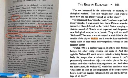 A la izquierda, imagen que se difunde. A la derecha, extracto online del libro The eyes of darkness. (Foto Malditaes)
