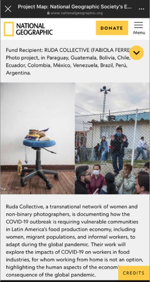 """""""Ruda"""" documenta el Covid-19 en la región. (Foto: Captura de pantalla)"""