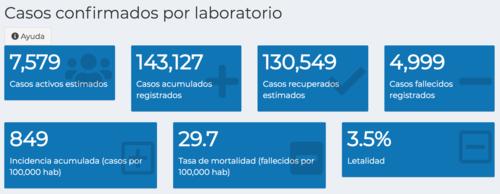 El Tablero Covid-19 muestra los datos totales hasta el viernes 8 de enero de 2021. (Foto: Ministerio de Salud)