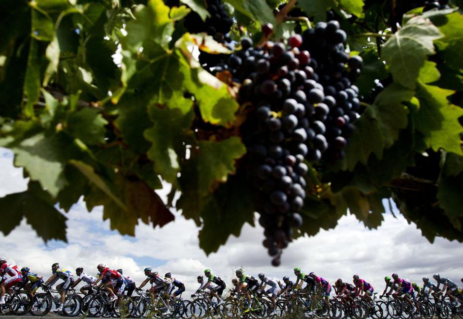 """Españay los viñedos en la 68 ediciónde """"La Vuelta""""a España, una etapa de 189 kilometros entre Calahorra y Burgos el 11 de septiembre de 2013.(Foto:AFP/ JAIME REINA)"""
