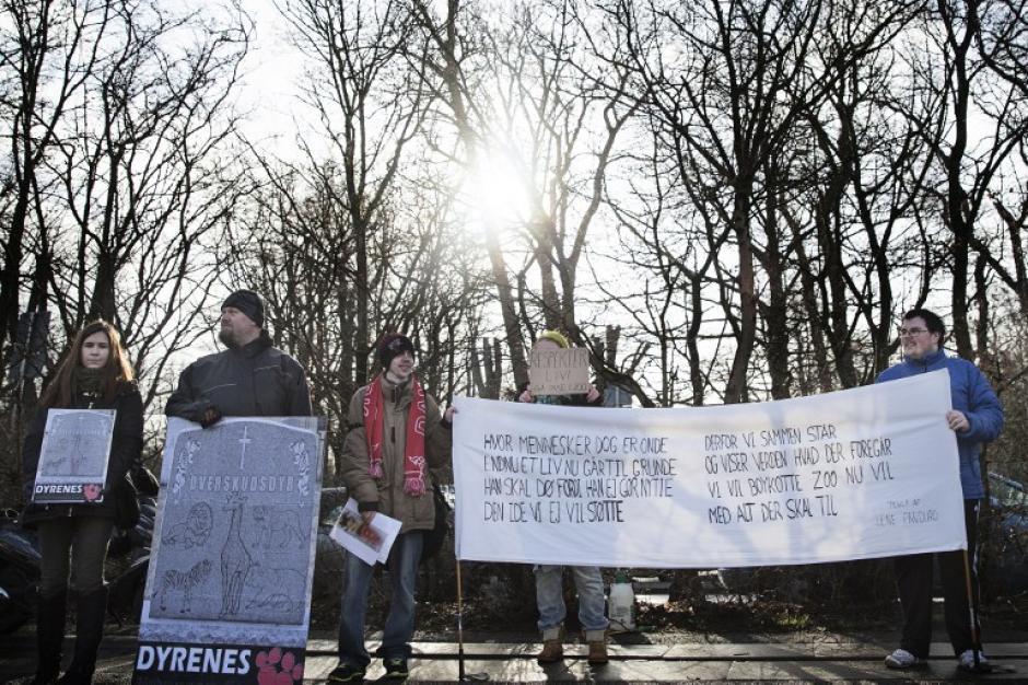 Cientos de manifestantes se presentaron al zoológico de Copenhague para mostrar su indignación