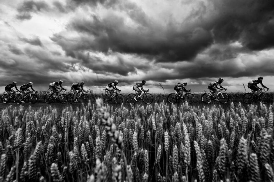 Un grupo de ciclistas es captado mientras pasan por un cultivo de trigo en la 102 edición del Tour de France. (Foto: Erick Feferberg/AFP)