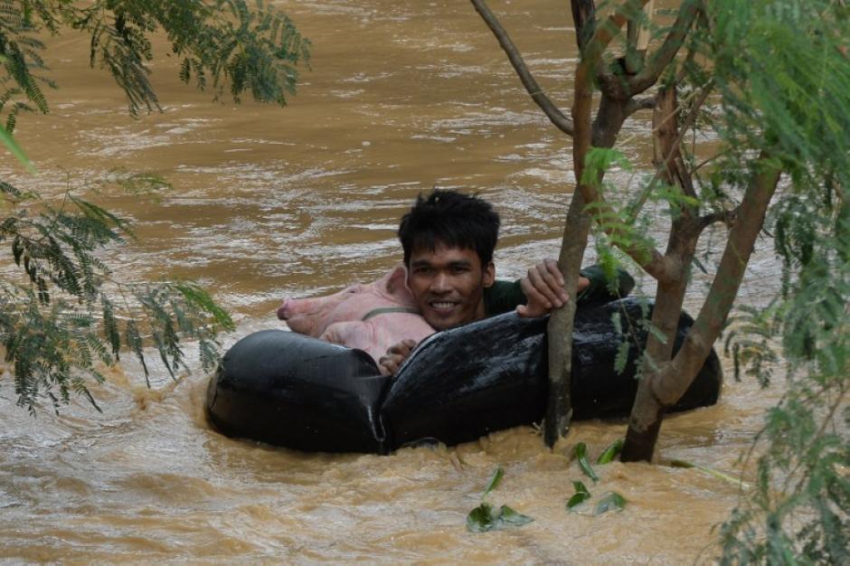 Un residente utiliza un tubo neumático inflable para ayudarle a un cerdo rescatado a mantenerse a flote en aguas de la inundación provocada por las fuertes lluvias causadas por el tifón Koppu en la ciudad de Santa Rosa, provincia de Nueva Ecija, al norte de Manila. (Foto: AFP/TED ALJIBE)
