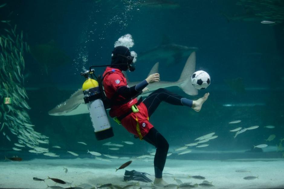 Un buceador lleva un uniforme de la selección de Corea del Sur mientras patea una pelota de fútbol en un acuario de sardinas en Seúl. Corea del Sur se enfrentará a Rusia, Argelia y Bélgica en el Grupo H en su octavo Mundial consecutivo. La foto del día 9 de junio fue tomada por Ed Jones de AFP.