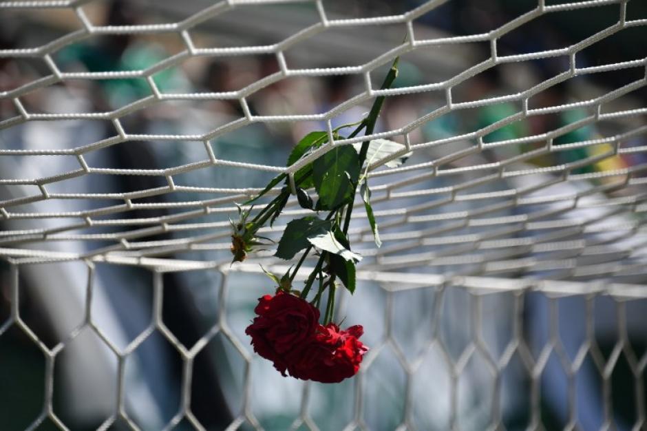 Una rosa cuelga de uno de los arcos en el estadio del Chapecoense. (Foto: AFP)