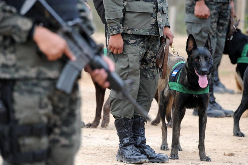 """La operación """"Avalancha"""" ha logrado la captura de doce dirigentes de la pandilla. (Foto: AFP/ATIC)"""