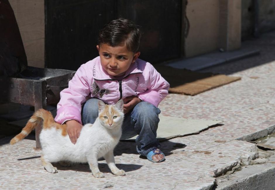 Una niña siria con su gato en el barrio rebelde celebra una vez de Baba Amro en la ciudad siria central de Homs, el 15 de marzo de 2014. (Foto: AFP / JOSEPH EID)