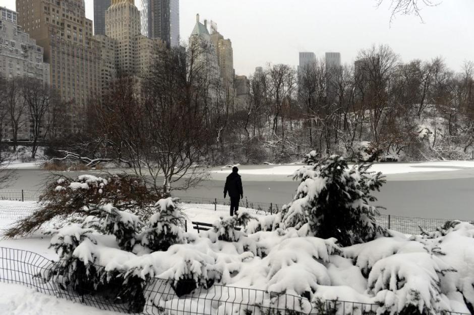 Así luce hoy el Central Park en Nueva York. Foto AFP