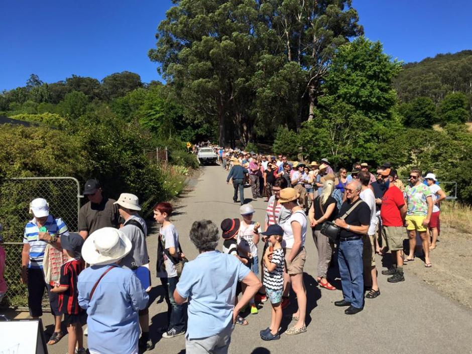 """Miles de personas hicieron una larga fila para esperar ver a la """"Flor cadáver"""". (Foto: Botanic Garden of South Australia)"""