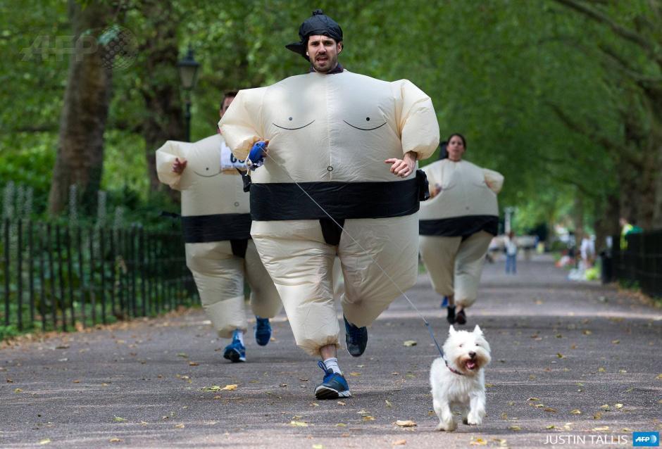 Uno de los participantes en el Sumo Run que se celebra en Londres junto a su perro. La Sumo Run es una caridad anual de 5km alrededor del parque y se corre con traje de sumo inflables. (Foto: AFP)