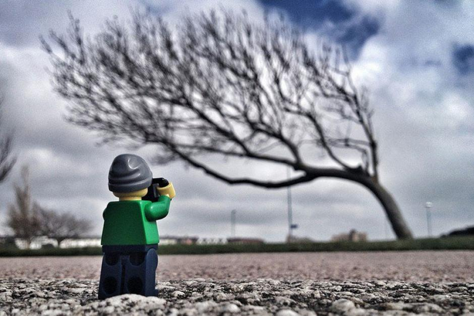 El Legógrafo con un árbol muy peculiar. (Foto: Andrew Whyte)