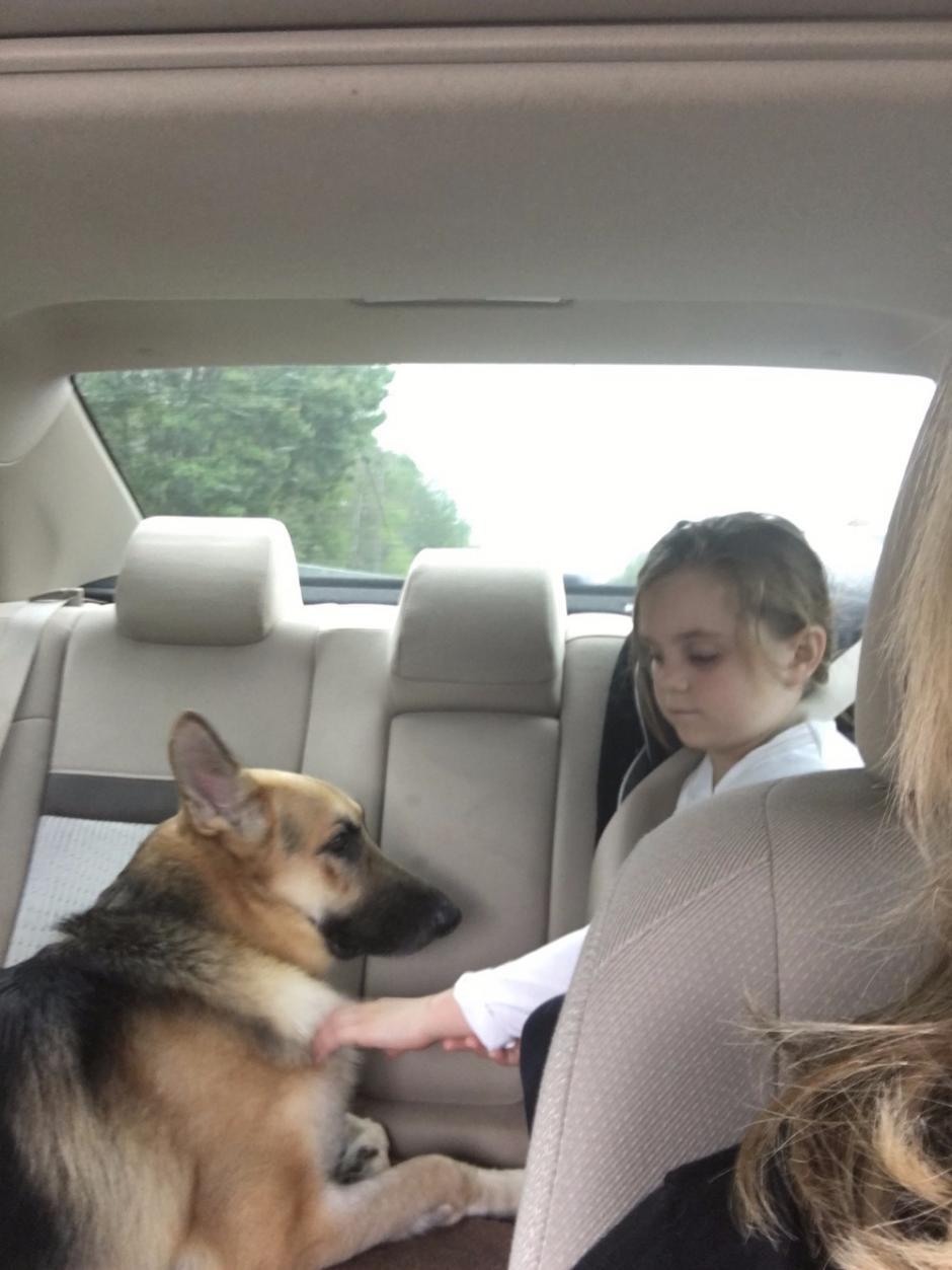 Molly, la menor a quien su mascota rescató. (Foto: GoFundMe)
