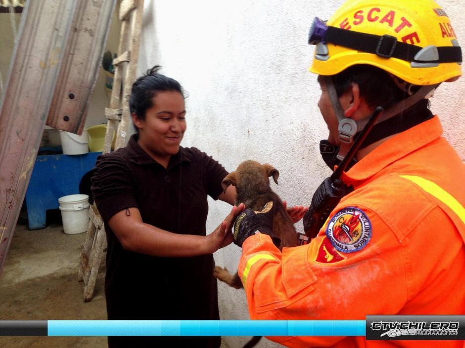 Los rescatistas entregan el perro a una mujer que los cuida en el albergue para mascotas rescatadas de la calle.(Foto: CTV.Chilero)