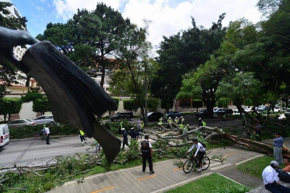 El incidente requirió el desvío del tráfico en el sector. (Foto Wilder López/Soy502)