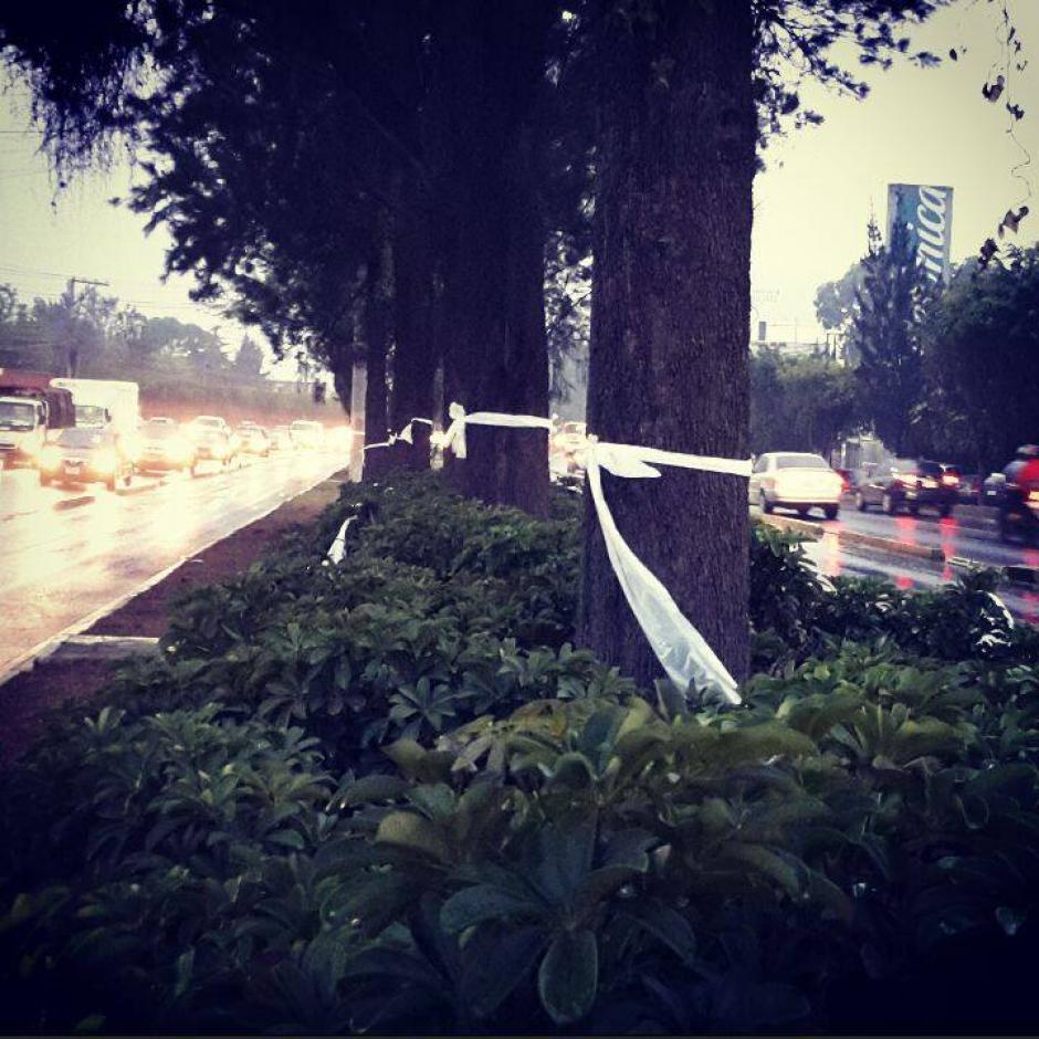 Los listones blancos fueron colocados en el carril central de la Aguilar Batres frente al establecimiento. (Foto: Facebook Justicia por Alex)