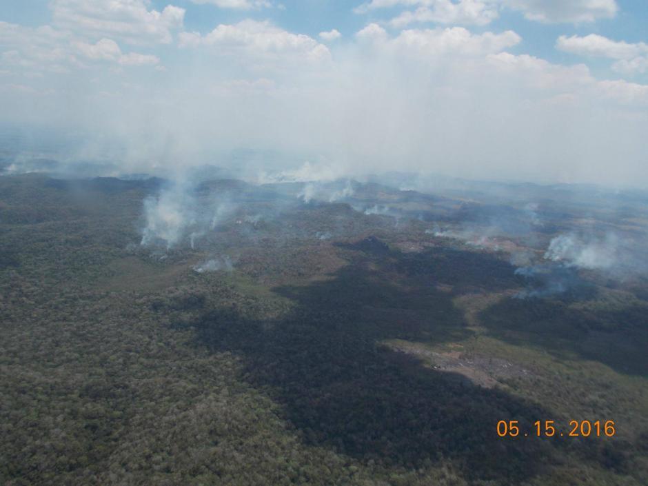 El 68 % de los incendios son provocados por el hombre en actividades relacionadas a la narcoactividad. (Foto: Cortesía de Matilde Ivic)