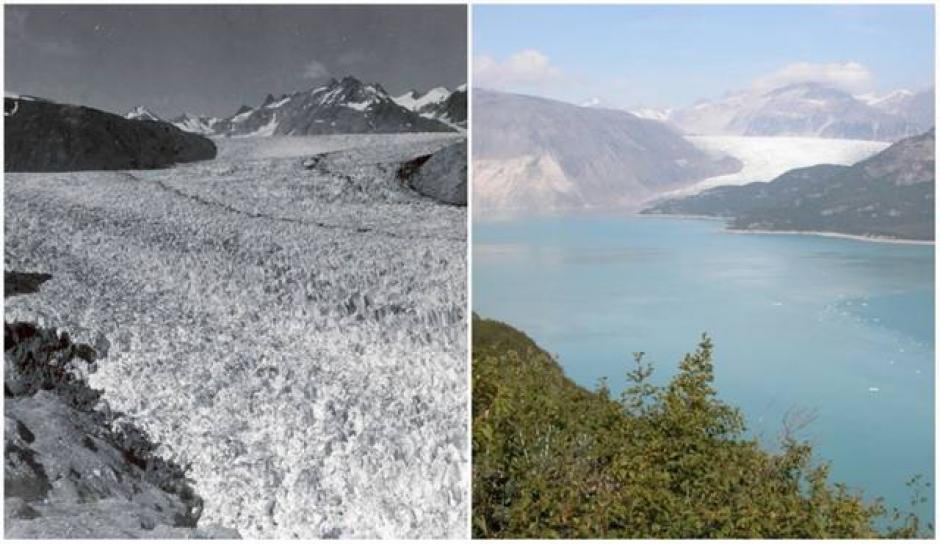 El Glacial Muir, Alaska. Agosto de 1941 (izquierda) y agosto de 2004 (derecha). (Foto: genial.guru.com)