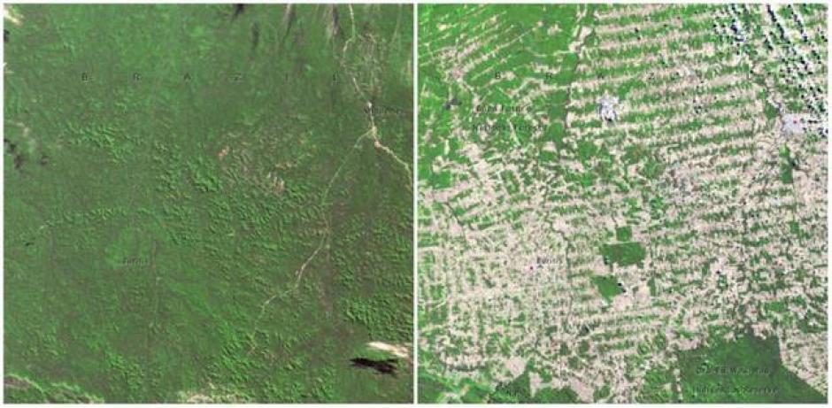 El Bosque en Rondônia, Brasil. Junio de 1975 (izquierda) y agosto de 2009 (derecha). (Foto: genial.guru.com)