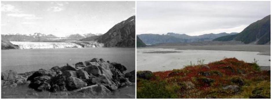 El Glacial Carroll, Alaska. Agosto de 1906 (izquierda) y septiembre de 2003 (derecha). (Foto: genial.guru.com)
