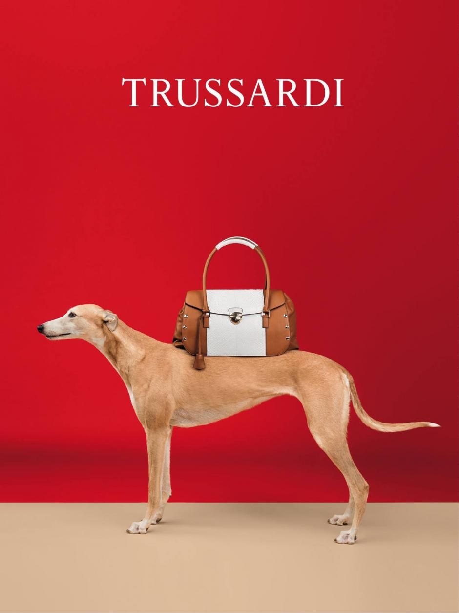 Los accesorios Trussardi también fueron elementos que mostraron los galgos. Foto Trussardi