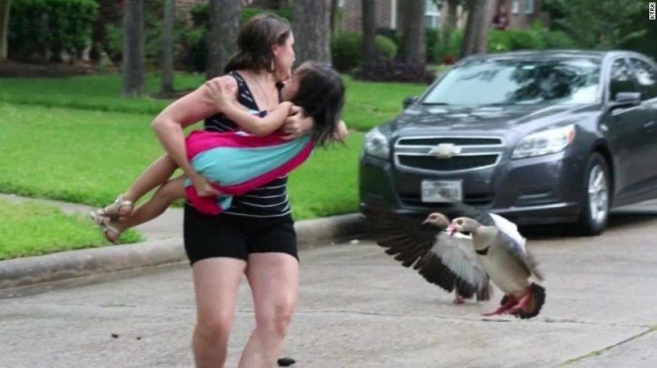 Una vecina tomó a Summer y la protegió, mientras otro tomó las fotos. (Foto: CNN)