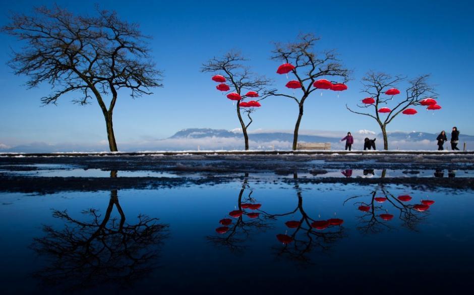"""Celebran a la lluvia, el agua de la nieve semiderretida de la Spanish Banks Beach de Vancouver (Canadá) refleja los paraguas rojos de la instalación artística Rainblossom Project. Un grupo anónimo colgó los paraguas para """"celebrar"""" la llegada de las lluvias a la ciudad. (Foto: EFE)"""