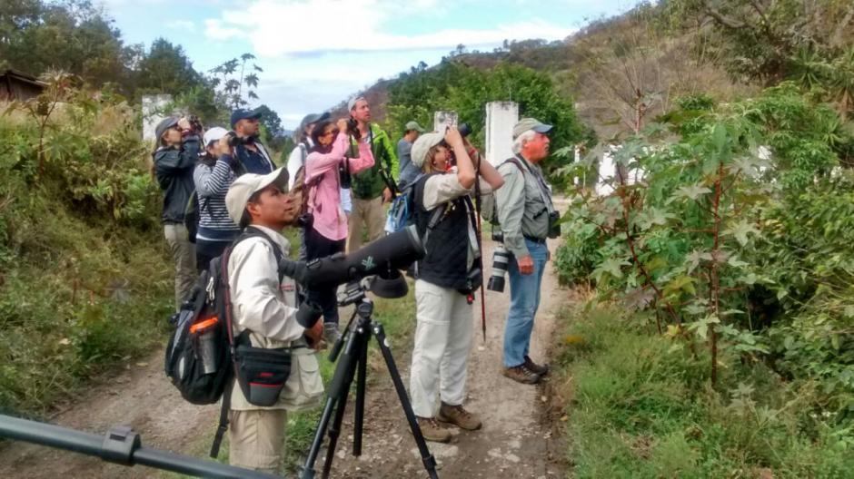 Las personas recorren senderos en busca de aves exóticas. (Foto: Inguat)