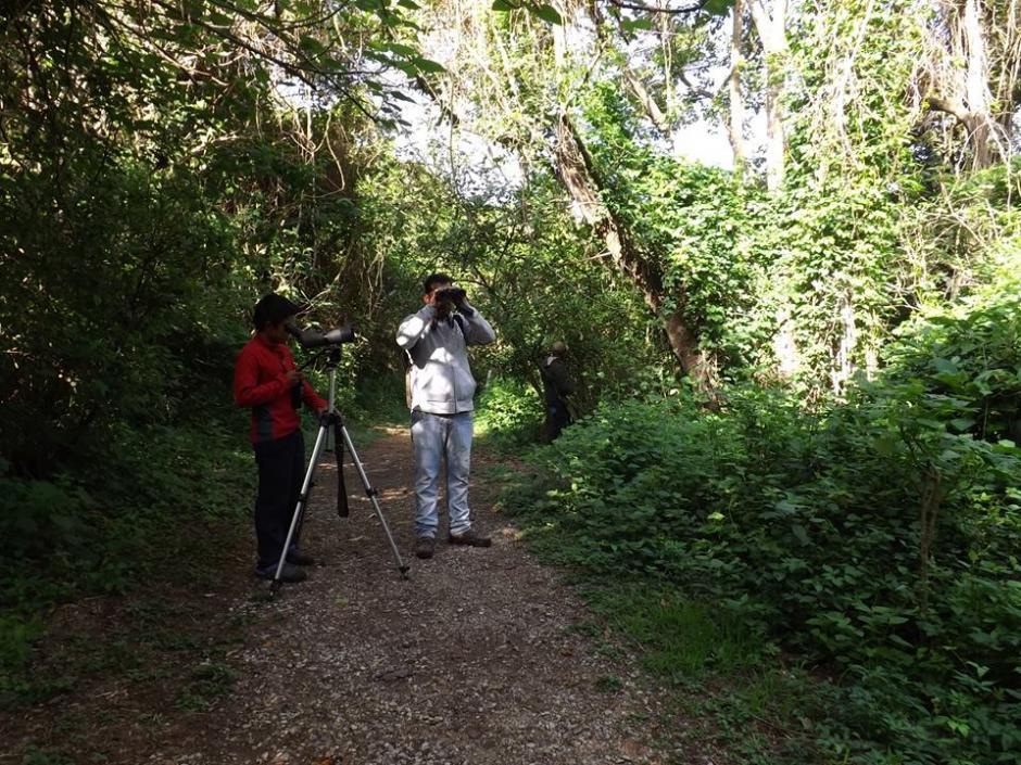 Admira a la naturaleza en el parque ecológico Deportivo Cayalá. (Foto:Parque Cayalá)