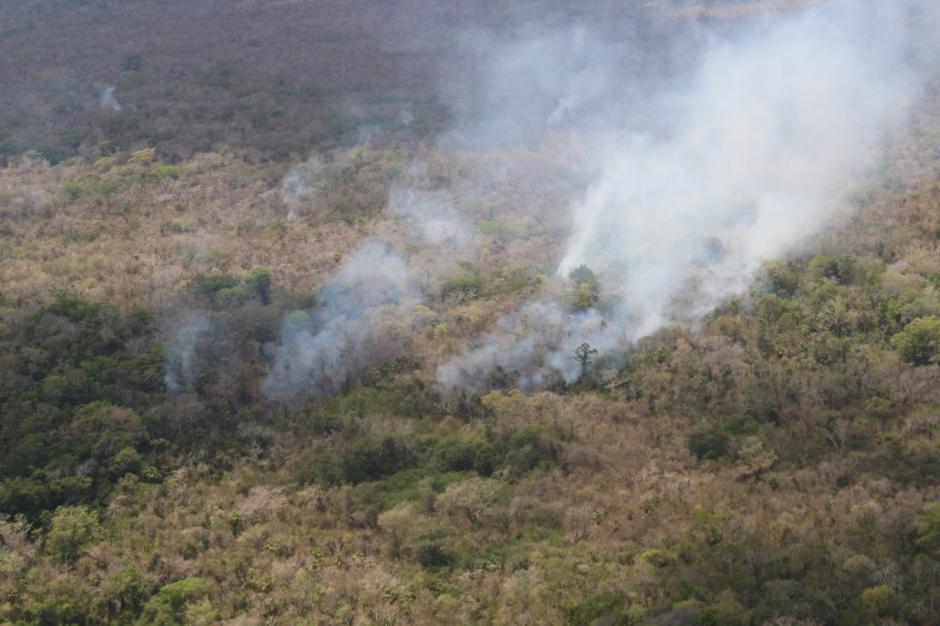 Por el momento hay siete incendios activos en la selva de Petén. (Foto: Conap)