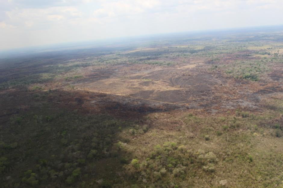 Se contabiliza un aproximado de 1 mil 500 hectáreas consumidas. (Foto: Conap)