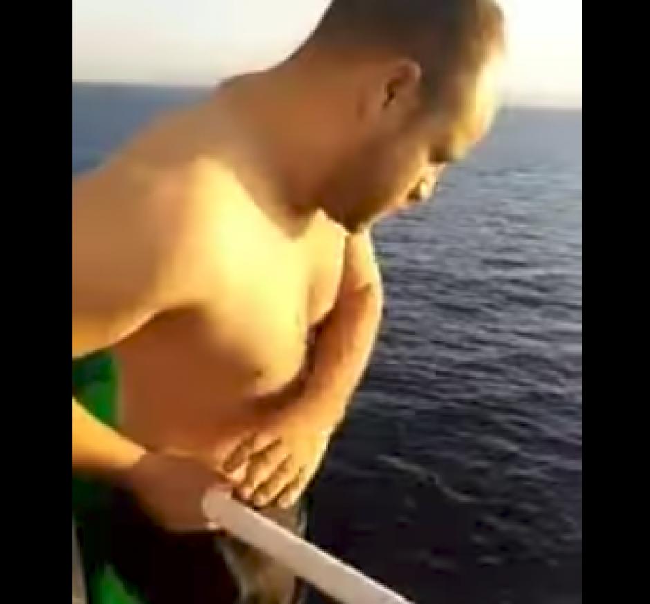 Marinero se lanza al mar y rescata a ballena en Francia