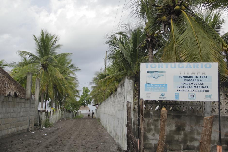 La zona de La Tilapa cuenta con un tortugario para la protección de esa especie marina. (Foto: Fredy Hernández/Soy502)