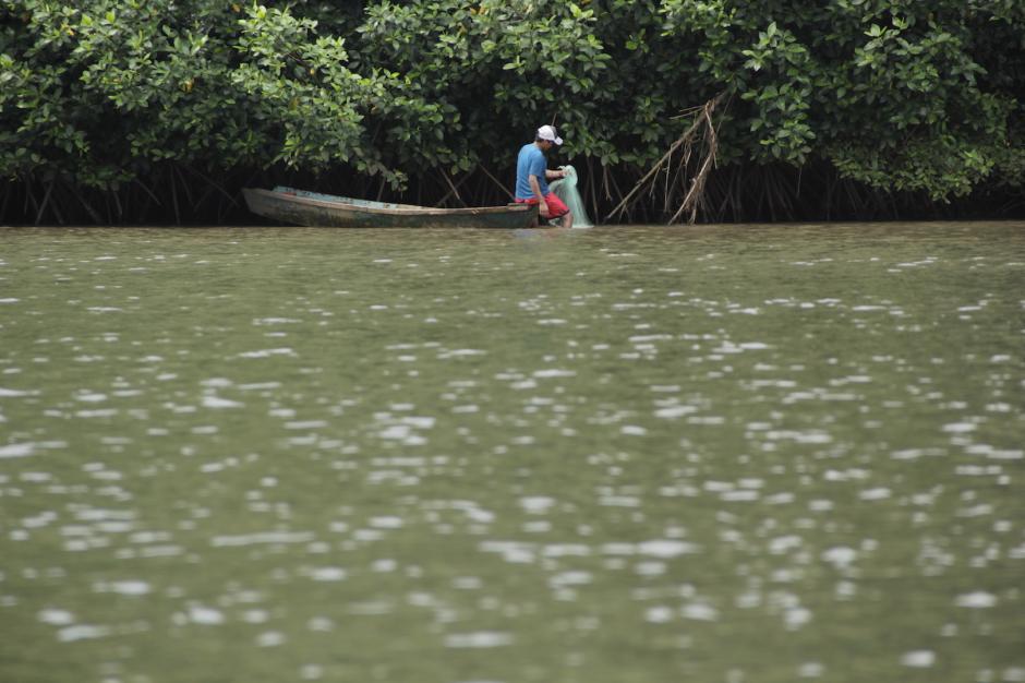 Los pescadores artesanales llegan al canal del Manchón Guamuchal para obtener algunos peces. (Foto: Fredy Hernández/Soy502)
