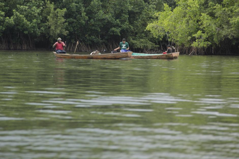 La zona está protegida por el Conap, especialmente los bosques de manglar. (Foto: Fredy Hernández/Soy502)