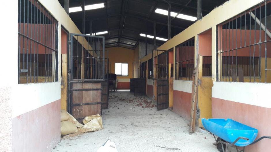 La misma tiene espacio para la crianza de caballos. (Foto: MP)