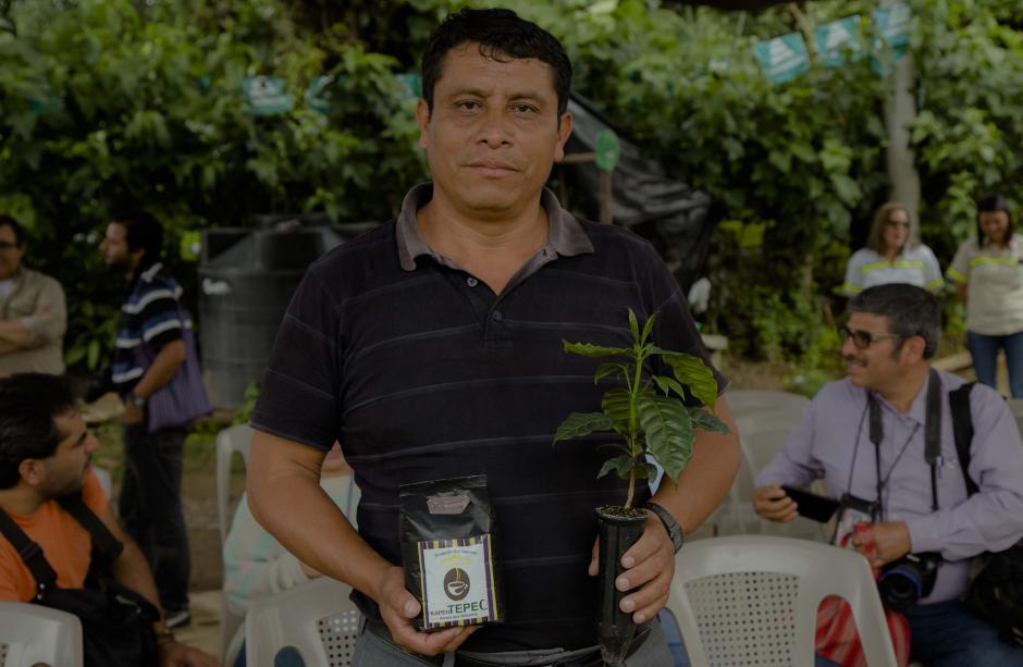 La producción del café es una de las actividades implementadas por CEMPRO en la comunidad. (Foto: Víctor Xiloj/Soy502)