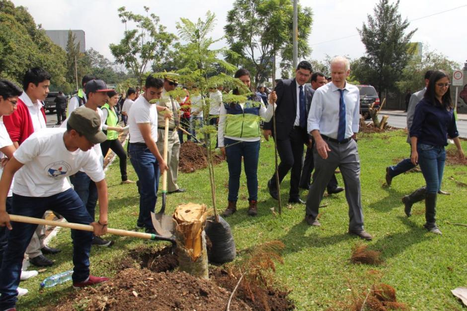 En el área, más de 50 árboles fueron talados la semana pasada. (Foto: Jesús Alfonso/Soy502)
