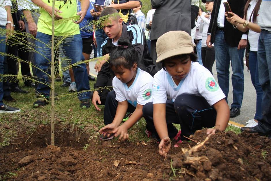 Varios niños y jóvenes reforestaron el área. (Foto: Jesús Alfonso/Soy502)