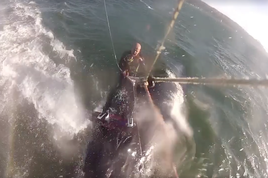 Un kitesurfista tropieza con una ballena